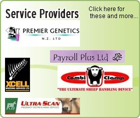 Service Providers List